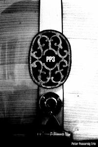 PP3 saz